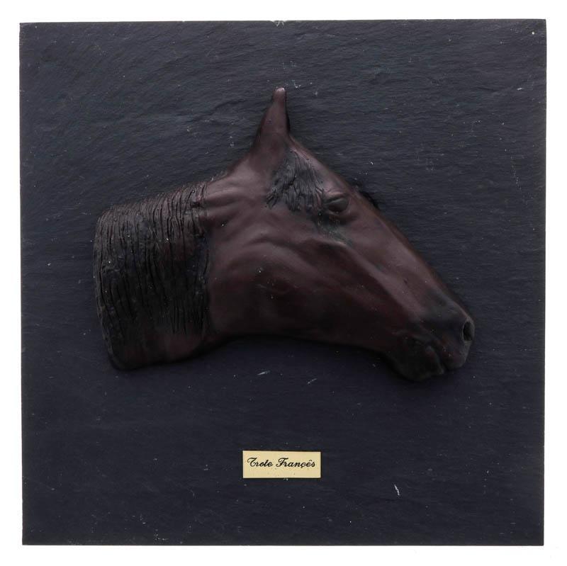 remoção de castanha de cavalo